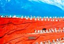 ทัวร์จีน คุนหมิง ต้าหลี่ ลี่เจียง แชงกรีล่า หุบเขาพระจันทร์สีน้ำเงิน 6 วัน 5 คืน (พ.ค.- มิ.ย.60) โดยสายการบิน CHINA EASTERN AIRLINES